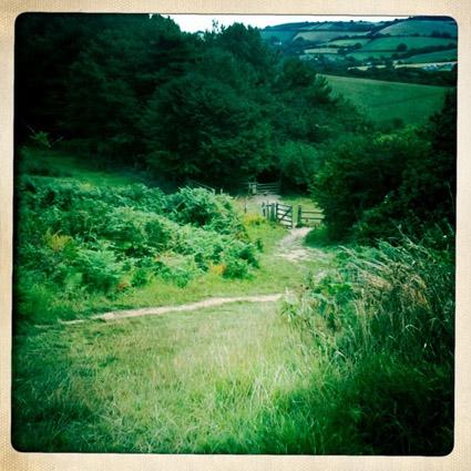 Dorset retro pic